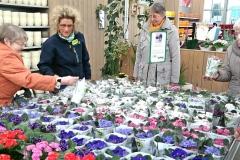Klein-Gruppe im Gartenmarkt